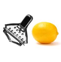 Выращивание лимона в домашних условиях | Все о цветах